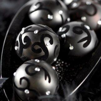 Black Silver Beauty